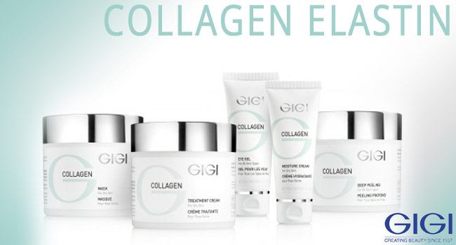 gigi collagen elastin